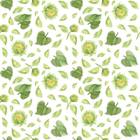 Sunflower buds and leaves seamless pattern. Watercolor clipart on white background