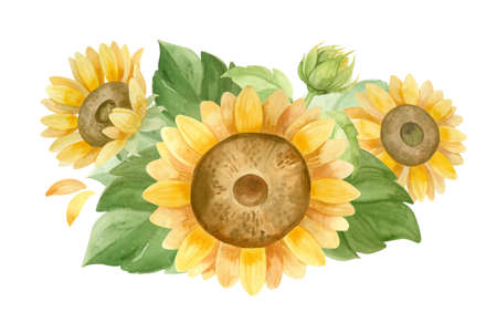 Sunflowers, flower arrangement for Sunflower products, Harvest Festival, Thanksgiving Day.