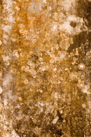 A abstract image of an old wall showing textures & patterns.