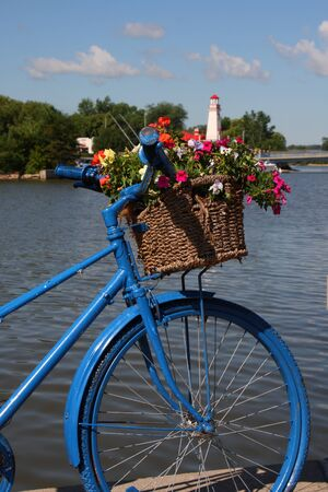 bicycle flower bed display art Reklamní fotografie