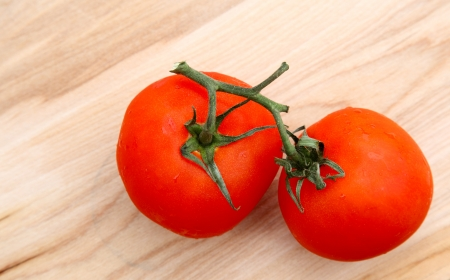 fresh red organic tomatoes with vine still attached Reklamní fotografie