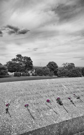 Roses by JFK  wall at Arlington National Cemetery Standard-Bild