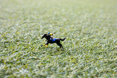 horse jump: man ride horse jump over barrier on lawn, model figure