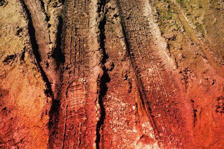 abstract wheel trail, dry soil, sweet dreamy