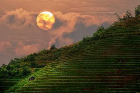 Mountain view,Amazing Rice terraces,sunset, landscape Stock fotó
