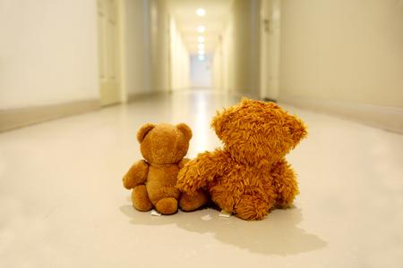 2 bear dolls sit together, hug and hold