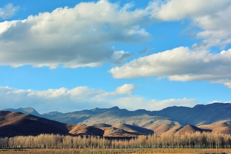 Beautiful landscape scenery with tree, cloudy and blue sky in China
