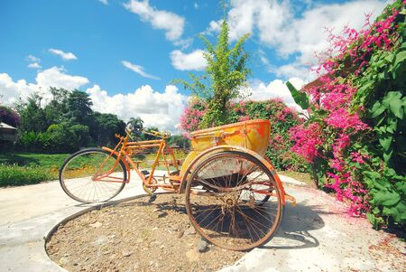 Tricycle in the garden with blue sky