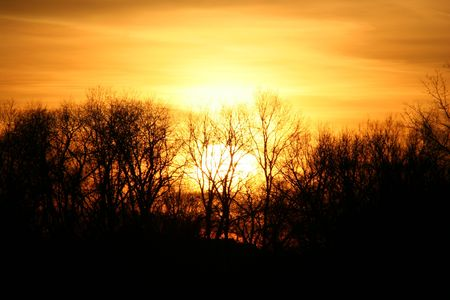an image of a sunset behind some trees Stock Photo - 863949