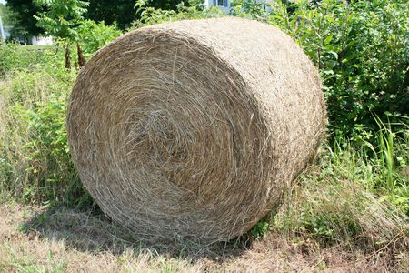 an image of a hay roll Imagens