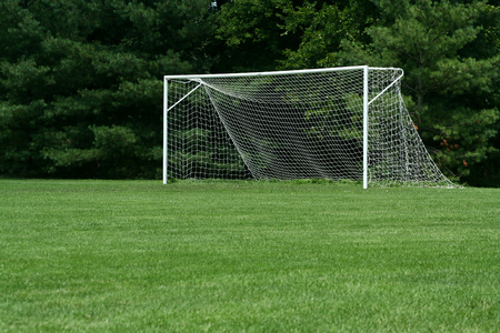 soccer net: an image of a Soccer Net with trees