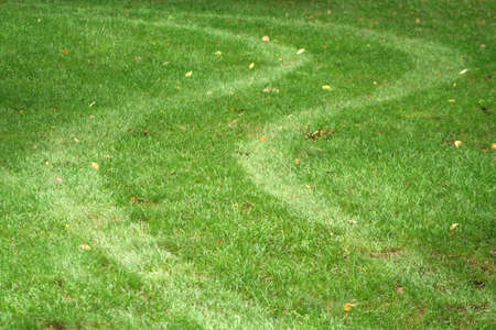 tire tracks: a set of Tire tracks in the grass Stock Photo