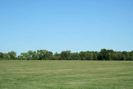 A Field with blue sky and trees Stock Photo - 1787634