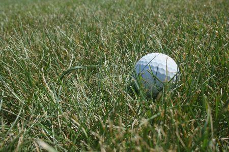 Een witte Golf bal in de ruwe