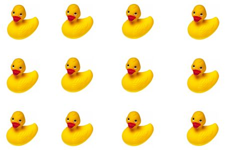 rubber ducky: An Isolated Rubber Ducky Background on white