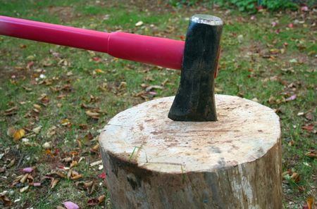 A Wood splitting ax in a log