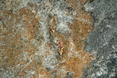 A Abstract Stone Background close up photo