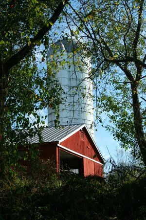 A Red Barn and silo through trees Imagens