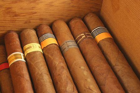 Cigars in a humidor