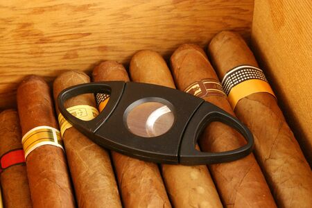 Cigars in a humidor with cutter