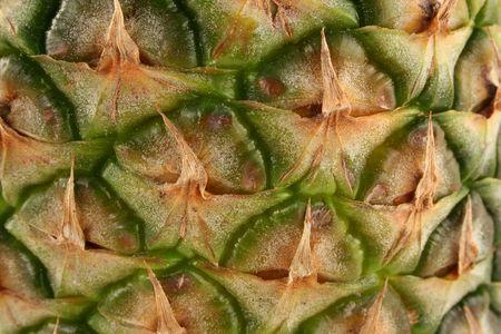パイナップル皮マクロの背景