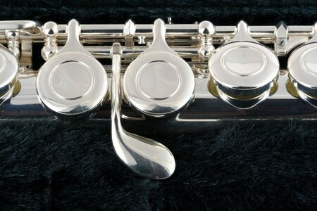 Flute macro in a case