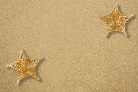 fish star: Dos estrellas pescar en la playa