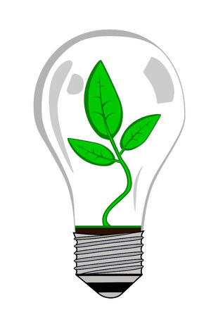 the greenhouse: Greenhouse electric Light bulb with plant