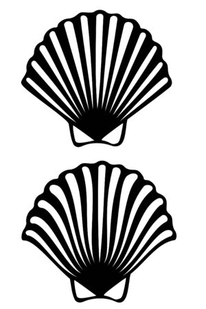 scallop shell: A scallop shell tribal tattoo