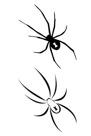A Black widow spider tribal tattoo Vector