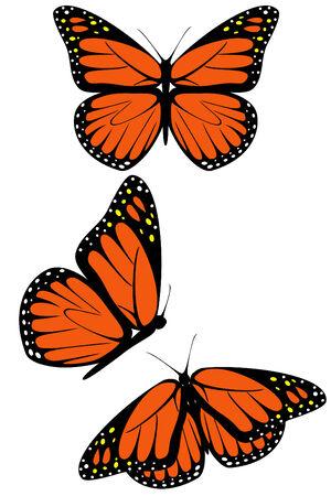 Een set van drie monarchvlinders Stock Illustratie