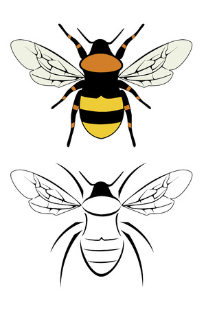 A set of two bumble bees