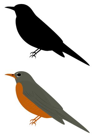 Un rojo breasted robin