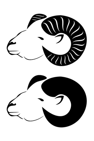 ram sheep: A tribal rams head with horns Illustration