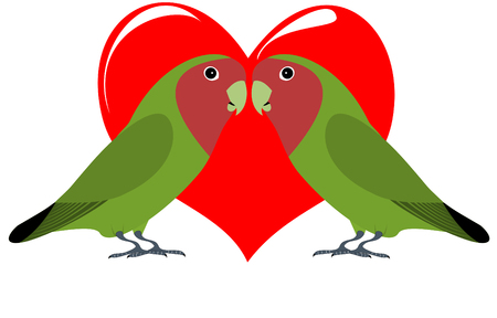 A pair of lovebirds with heart Vector