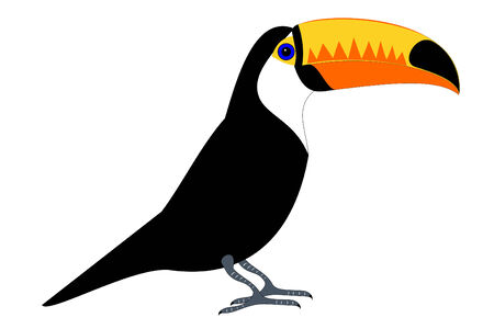 tucan: A isolated tucan bird Illustration