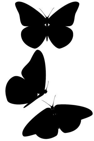 A black butterfly silhouette set