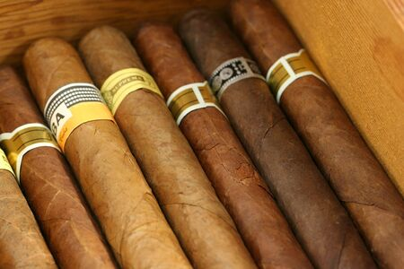 Cigars in a humidor close up