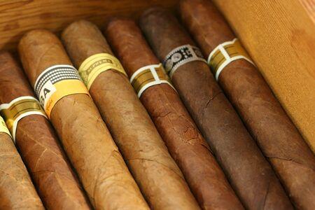 Sigaren in een humidor dichten Stockfoto