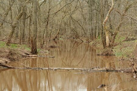 A muddy river after a storm