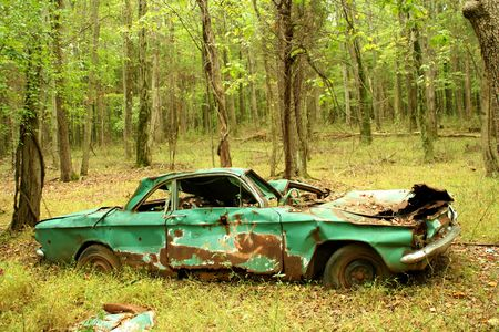 abandoned car: Un autom�vil abandonado en el bosque