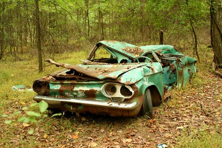 A Abandoned car in the woods Stock Photo - 8139970