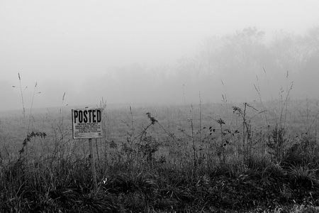 Foggy sign on the edge of a field