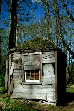 A Old abandoned hut in the woods Stock Photo - 9482321