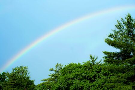 A Rainbow with blue skies and trees