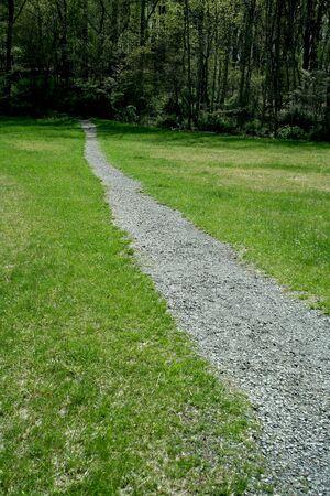 Een pad door een groen veld