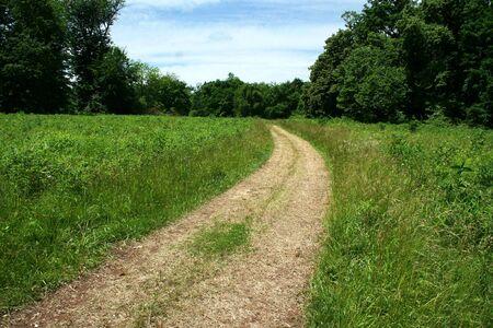 芝生のフィールドを介してパス 写真素材 - 14096322