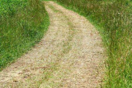 芝生のフィールドを通過するパス