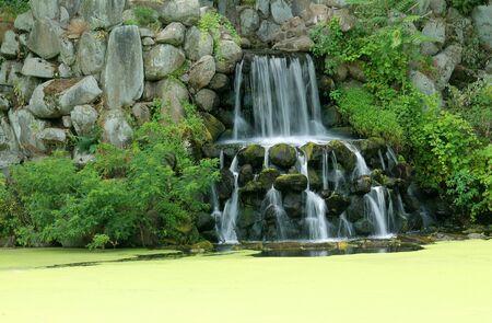 覆われている藻の池の滝 写真素材 - 14900957
