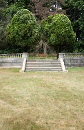 いくつかの木が石段 写真素材 - 20011126